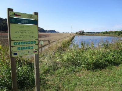 Naturreservatet Strunjan-Stjuža/Strugnano-Chiusa.