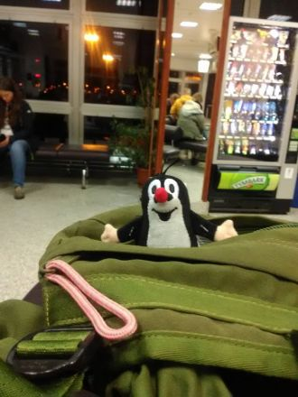 """""""Hele, hele! Tady!"""" Krtek från Prag på väg till Sverige. I terminalen i Świnoujście."""