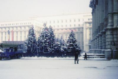 Tyvärr är det inte jultomten som skymtar på husväggen ovanför granarna utan Ceauşescu. Ovanför porträttet hänger en röd banderoll med slagord.